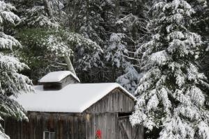 christmas sugarhouse