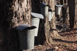 a run of buckets