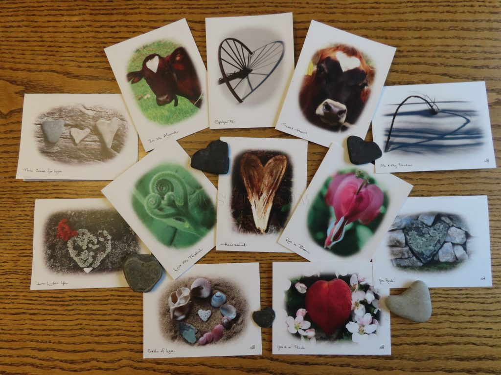 vermont photography cards